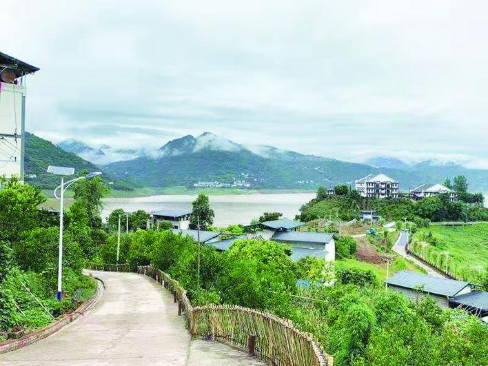 重庆万州:巴阳画廊 水墨黄柏